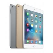 iPad Mini 4 (6)